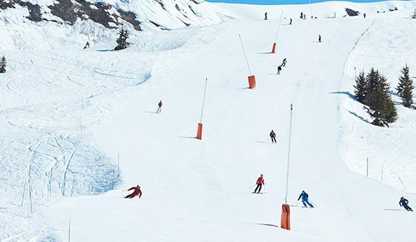 köpa skidor online